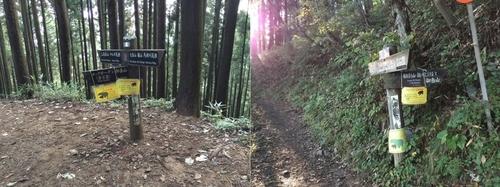 サルギ尾根・高岩山方面への分岐(芥場峠)と奥の院方面からの道との合流点.jpg