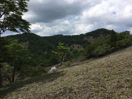 ヒキウス平から檜塚奥峰と檜塚.jpg