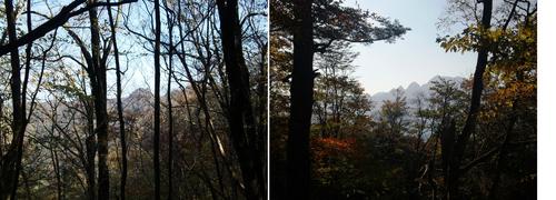 伯母ヶ峰本峰(左)と大普賢岳のシルエット(北峰の帰途に).jpg