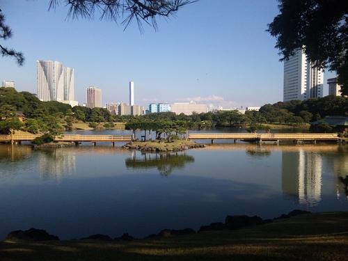 八景山から見る汐入の池.JPG
