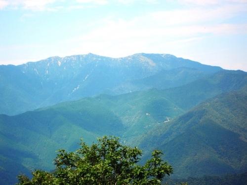 八経ヶ岳と弥山(林道の展望台から).jpg