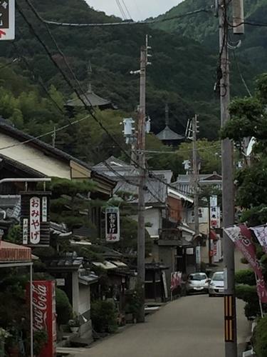参道から当麻寺の塔を望む.jpg