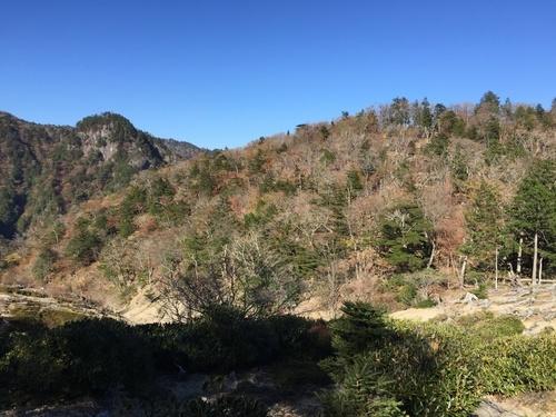 堂倉山から地池高への鞍部(左に直角に曲がる地点).jpg