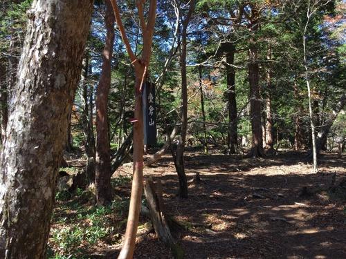 堂倉山の山頂にて.jpg