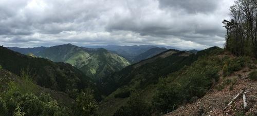 大峰奥駈道を望む伐採地からのパノラマ.jpg