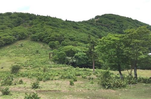 明神平から三ツ塚・前山方面を見る(リフトの残骸も見える).jpg