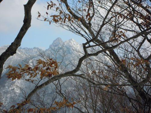 法力峠に下る道からの大日山と稲村ヶ岳.jpg