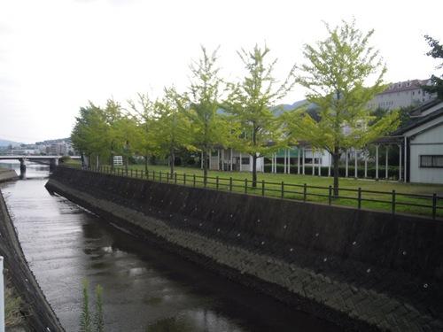 浦上川沿いの道.jpg