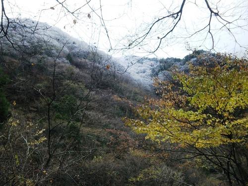 白く染まる山々.jpg