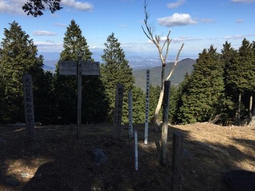白猪山山頂と北側の景色(中央右より木々の間に堀坂山).jpg