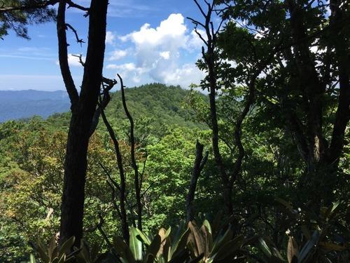 稜線から西谷高を望む.jpg
