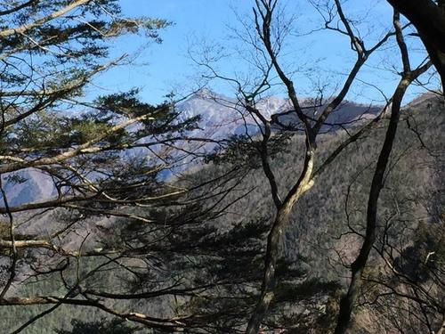 釈迦ヶ岳を遠望する.jpg
