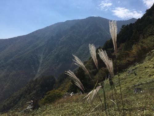 鉄山直下の別天地から弥山を望む.jpg