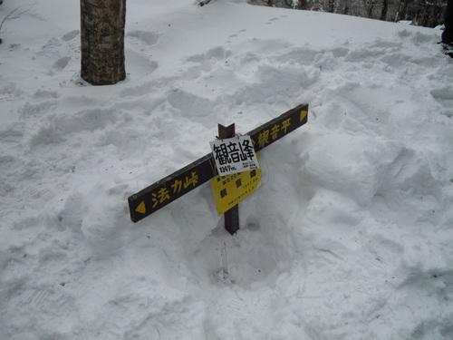 雪に埋もれた観音峰の山頂の道標.jpg
