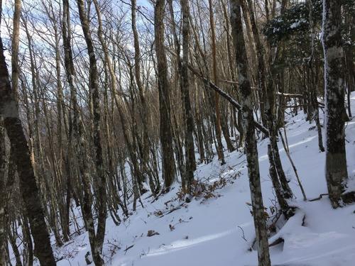 雪の稜線.jpg