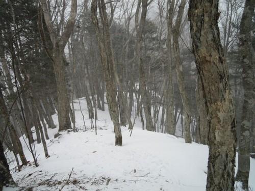 雪の舞う稜線.jpg