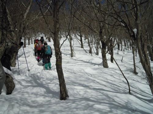 雪道を行く.jpg
