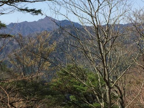 白鬚岳を望む.JPG